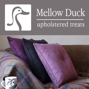 Mellow Duck Logo and Website Design