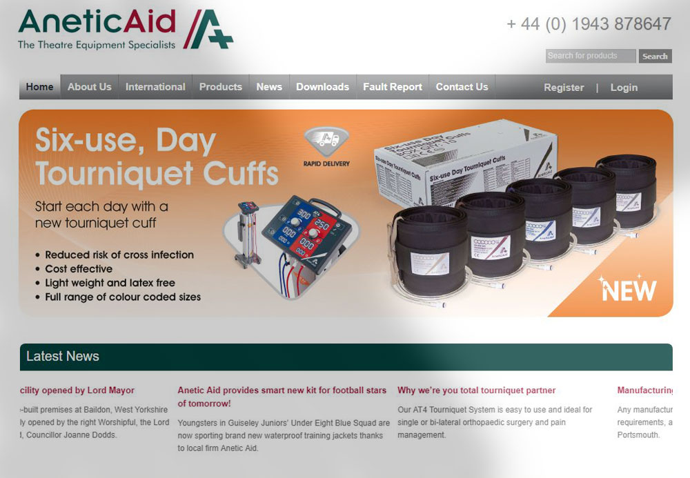Online Marketing Case Study: Anetic Aid