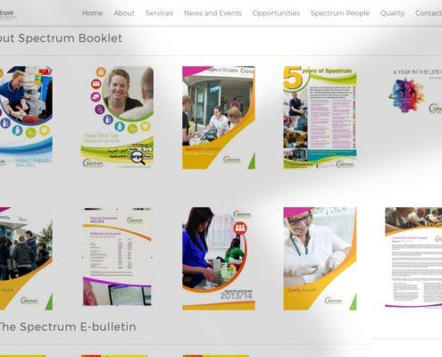 Website Development Case Study: Spectrum Health
